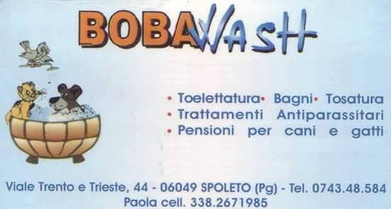 BovaWash